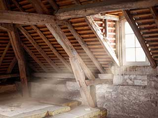 Attic Cleaning Services | Attic Cleaning Burbank, CA