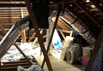 Attic Cleaning in Glendale | Attic Cleaning Burbank